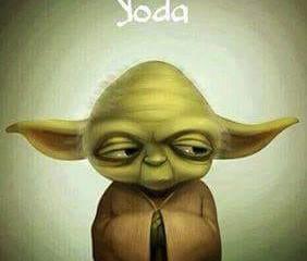 pensee yoda